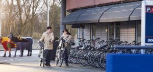 westcord-art-hotel-amsterdam-fietsen - Westcord Hotels