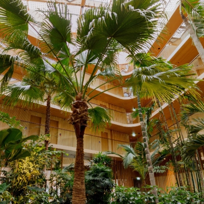 360 foto subtropische binnentuin
