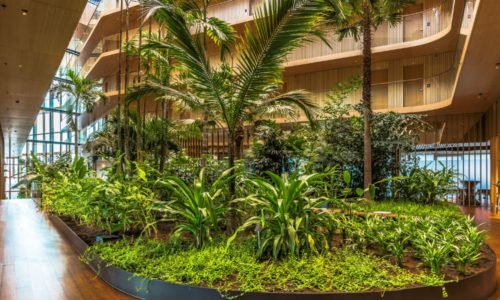 Price for the interior planting of Hotel Jakarta Amsterdam